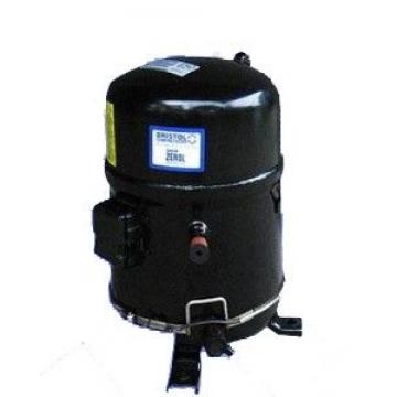 Герметичный компрессор Bristol H2NG244DRE