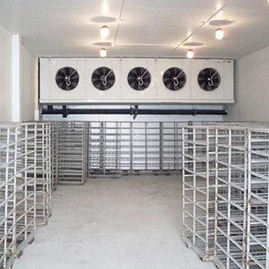 Холодильная камера для клубники