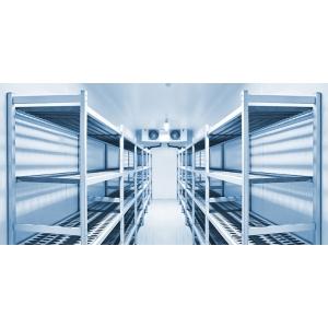 Холодильная камера для мяса