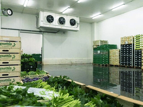 Холодильная камера для зелени