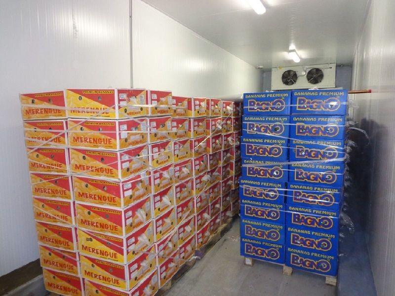 Холодильные камеры для хранения бананов