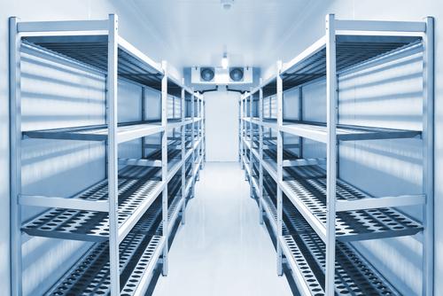 Холодильные камеры с РГС