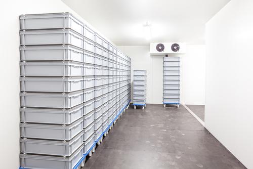 Холодильные камеры для хранения ягод